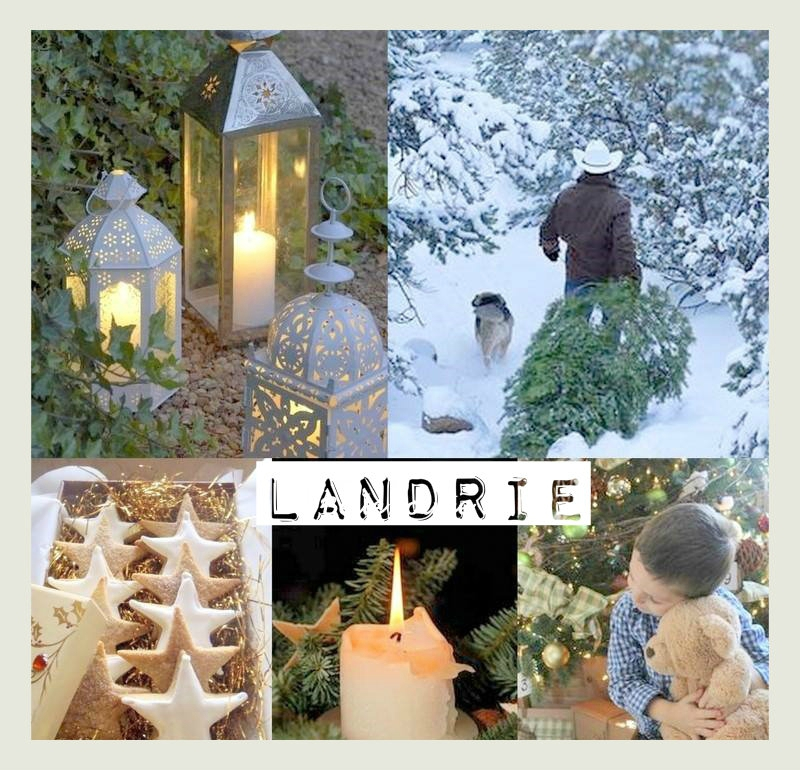 collage landrie2612