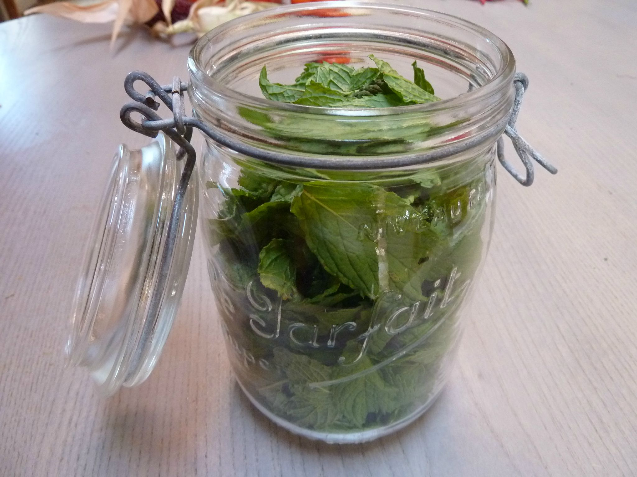 menthe - - www.passionpotager.canalblog.com