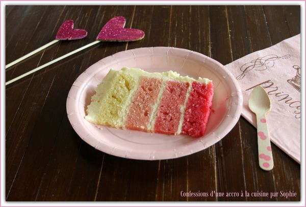 Pink Ombre Cake 004