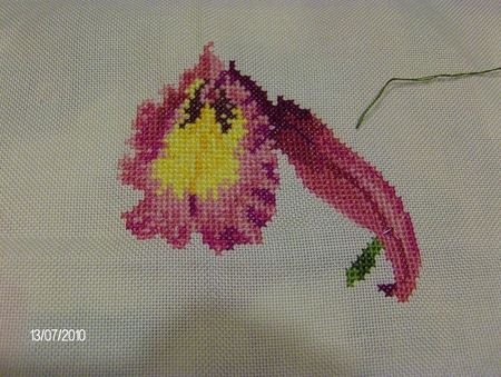 Saphir_orchidee4