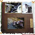 scrapbooking - sealife - 03