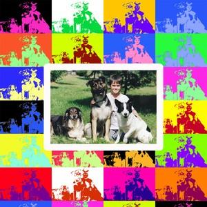 chiens_popart_copie