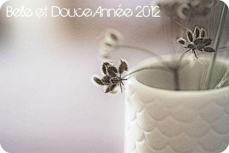 Voeux Blog 2012