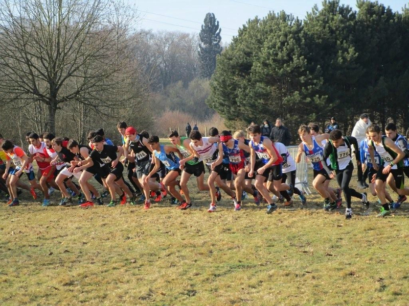 regionaux de cross 22 1 2017 combs la ville 002 (1)