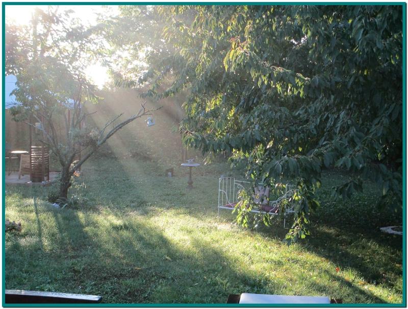 Soleil matin2