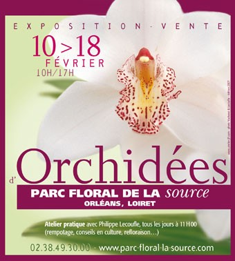 expo_orchidees