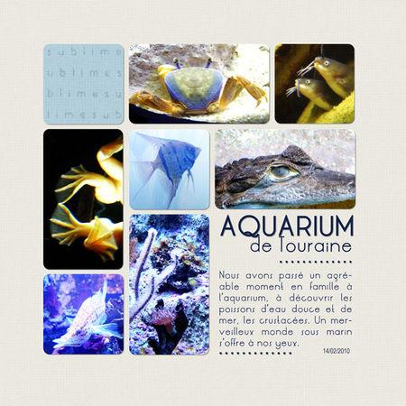 Aquarium_1___14_02_10_F