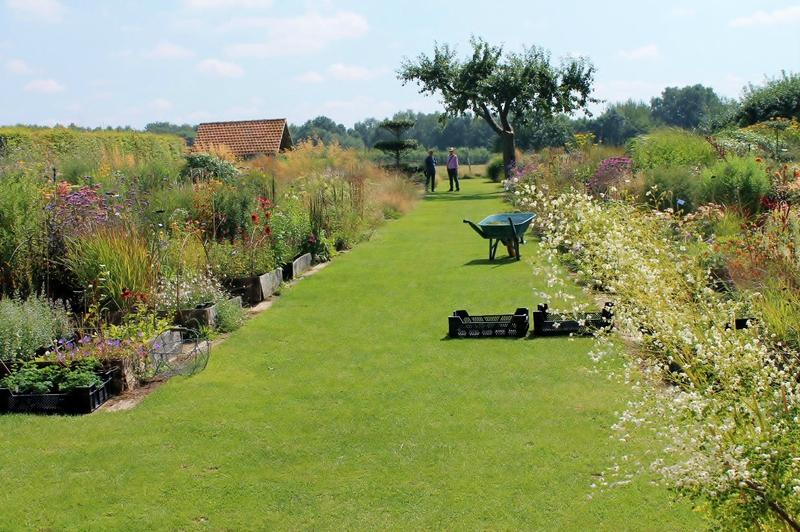 Jardin plume 76116 auzouville sur ry la m re de la mule for Auzouville sur ry jardin plume