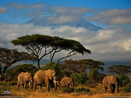 photos_national_geographic_juillet_2011_18_625x468