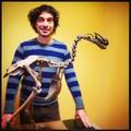 Le squelette de dodo d'orléans