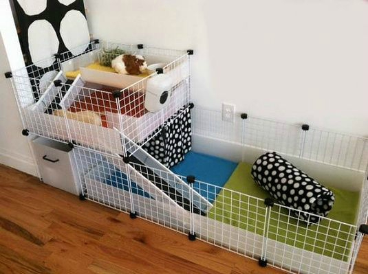 La cavy cage muffin et snoopy for Diy c c guinea pig cage