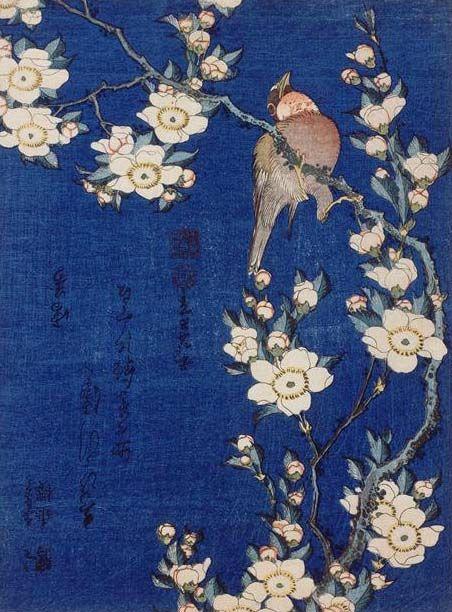 hokusai cerisier bouvreuil