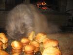 Gourmandises_moelleuses___l_orange_et___la_poudre_d_amande_017