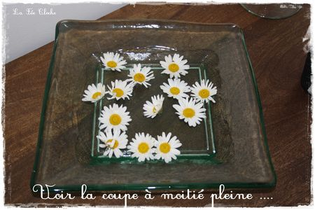 fleur_015