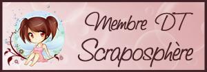 scrapo_dt