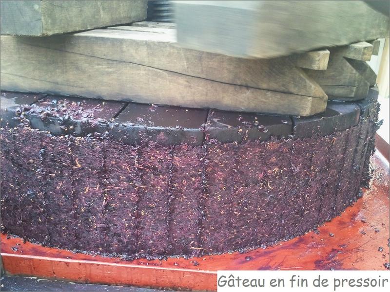 Gâteau en fin de pressoir