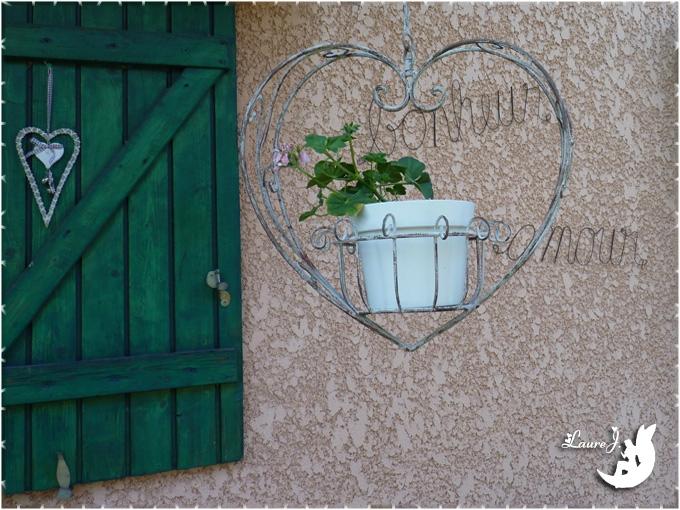 geranium lierre double 1