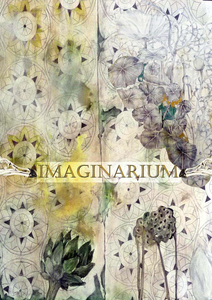 imaginarium2 net