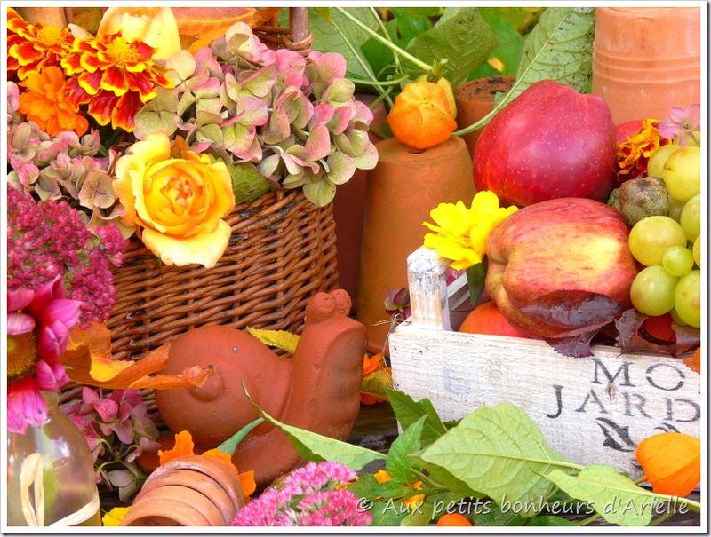 Couleurs d'automne (16)
