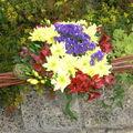 Mes fleurs en automne...