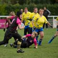 18IMG_0482T