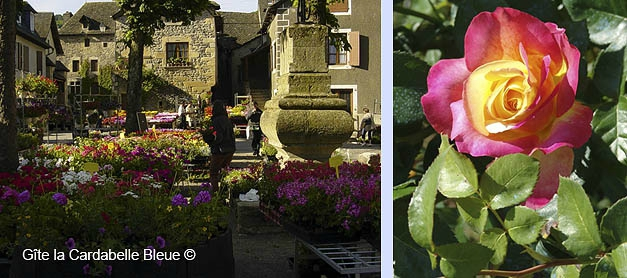 Eulalie olt village fleuri