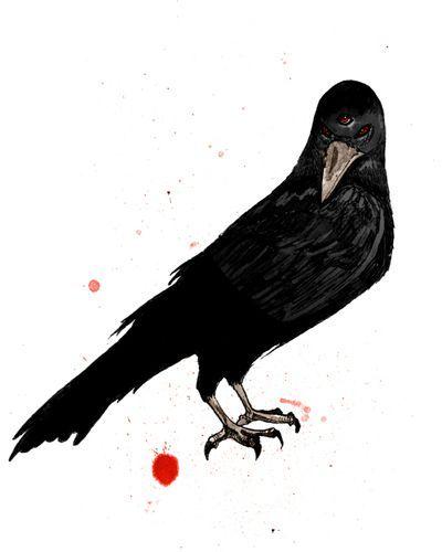 corbeau_ter