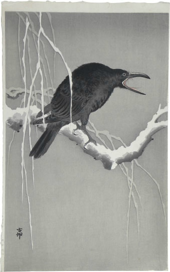 Cawing Crow on a Snowy Bough