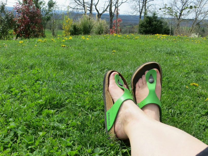 pieds ds l'herbe