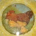 poulepâques2004 005