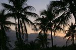 FLORIDA1- 2011