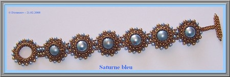 Sature_bleu_plat___Disamare___21