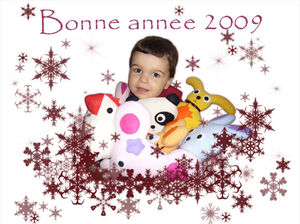 bonne_annee_2009