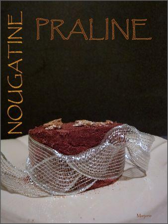 Entremet_choco_pralin__et_chocolat_noir_aux__clats_de_nougatine2