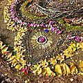 fleuilles se fanant sur mandala yurtao