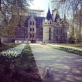 Dog-friendly place: castle of azay-le-rideau (english)