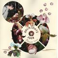 011 Orchidays 2008