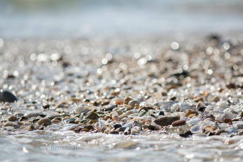 bretagne-plage-mer-15-06