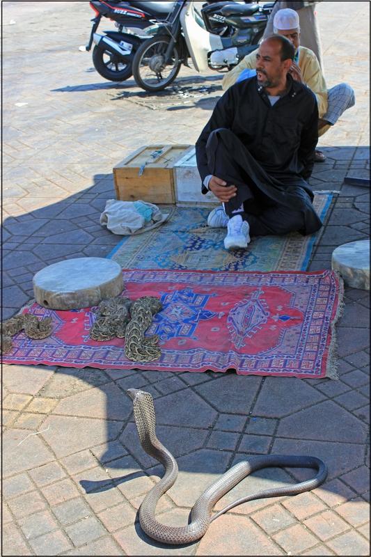 marrakech juin 2014 (27)