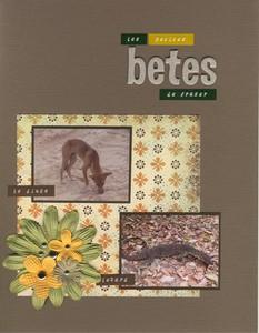 Betes_de_fraser