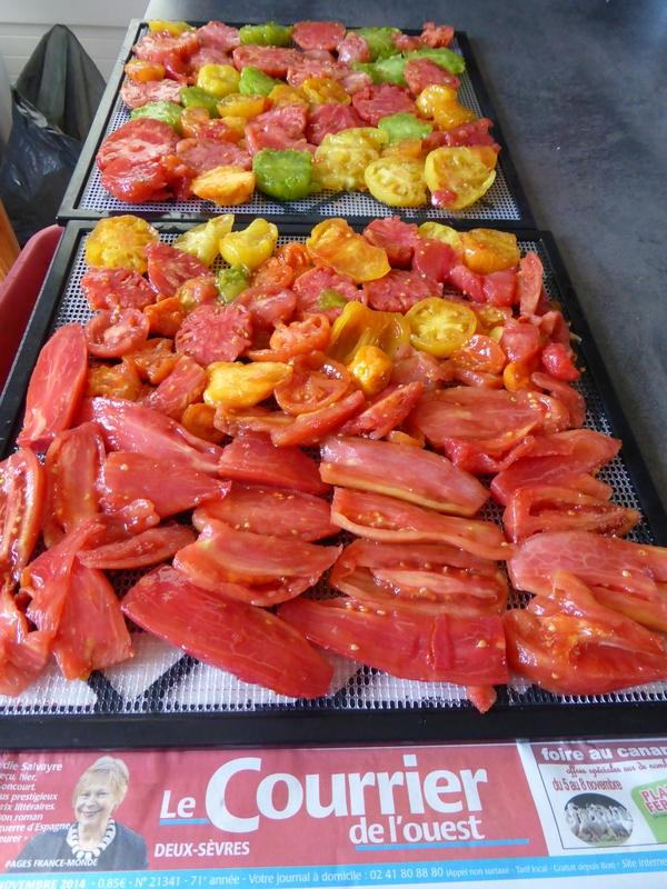 6-tomates séchées (2)