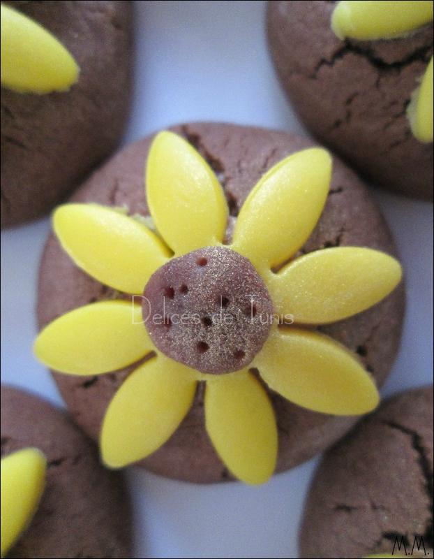 Biscuits tournesol chocolat 3