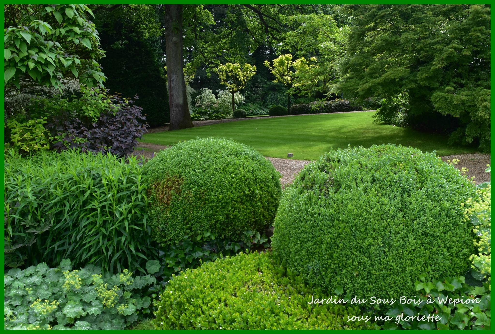 Le jardin du sous bois wepion belgique sous ma gloriette for Jardin belgique