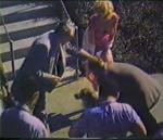 1952-ray_anthony-cap40