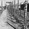 1940 - des millions de prisonniers de guerre sont envoyés dans des camps en allemagne