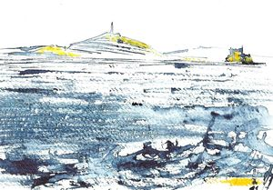 îles du frioul bicolore