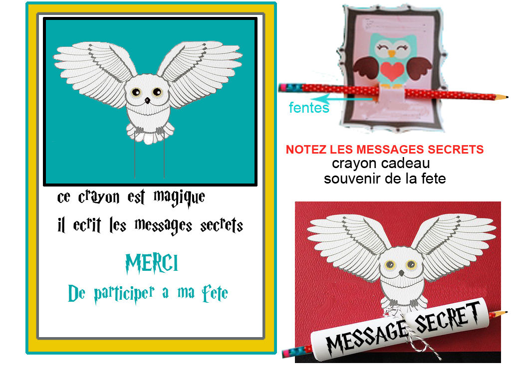 "Beliebt THEME "" HARRY POTTER "" MAGIE ET SORCELLERIE. - 1 et 2 et 3  TK55"
