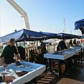 Marché aux poissons - marseille : sainte-lucie vous a à l'oeil