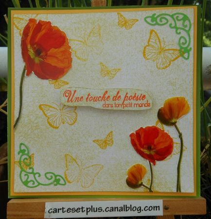 coquelicots et papillons small