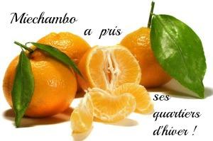 Miechambo mandarines